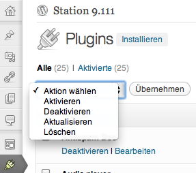 WordPress Plugin-Chaos beseitigen