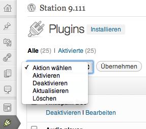 WordPress Plugin-Chaos beseitigen
